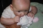 lamb is tasty