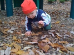 leaf picker